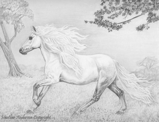 An Andalusian horse trotting through fog is featured in this pencil/graphite painting by Heather Anderson.